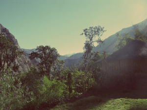 paysagecorpp